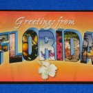 **BRAND NEW** GREETINGS FROM FLORIDA POSTCARD FLAMINGO ORANGES PARROT PALM TREES