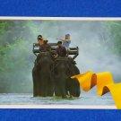 VINTAGE BEAUTIFUL THAILAND POSTCARD ELEPHANT TREKKING IN THAILAND'S FAR NORTH