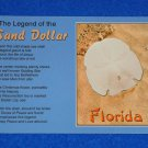 **BRAND NEW** FLORIDA SAND DOLLAR LEGEND POSTCARD SEA URCHIN ODD SHAPE SEA SHELL