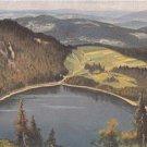 CM28. Vintage Postcard. Feldberg. Germany