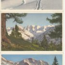 BZ101.Vintage Swiss Postcards x 3.Winter views.Thor Gyger, STZF
