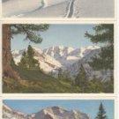 BZ101.Vintage Swiss Postcards x 3.Winter views.Thor Gyger, STZF