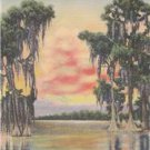CJ58.Vintage US Postcard. Sunset on a Southern Lake.