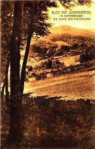 CN35. Vintage German Postcard.  View of Johannaberg and the top of Falkenburg