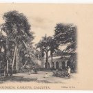 CM87.Vintage Undivided Postcard. Zoological Gardens, Calcutta. India.