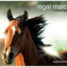 Horses REGALMATCHS