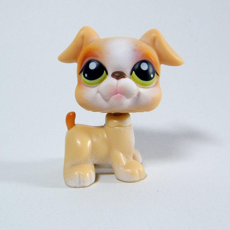 Littlest Pet Shop # 235 Tan Boxer Dog Puppy from Super Surprise Obstacle Course