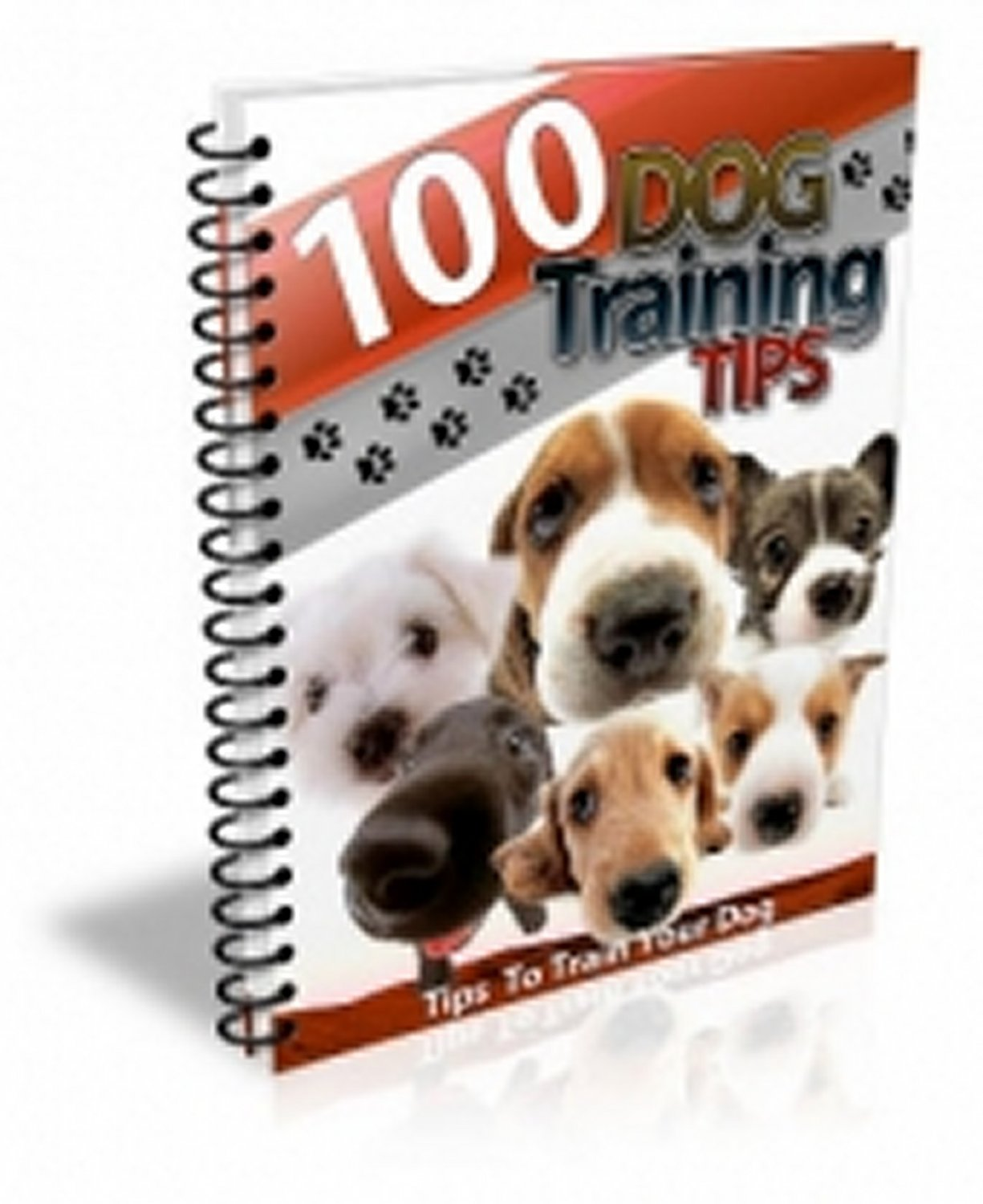 100 Dog Training Tips PDF eBook xpress2shop
