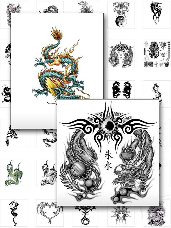 DRAGON TATTOOS  xpress2shop