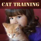 All About Cat Training eBook PDF  delicias2shop