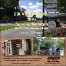 """SENOIA, GEORGIA VIRTUAL WALK"" Home of the Walking Dead, Treadmill Exercise DVD"