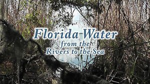 """WATERWAYS OF FLORIDA"", Rivers, Lakes, Ocean Relaxation & Meditation DVD / Video"