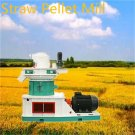 3t/h Straw Pellet Line factory  jingerui