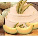Natural Vanilla Melon Soy & Shea Butter Body Lotion 16 Oz