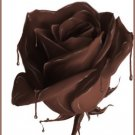 All Natural Chocolate Rose Scented Shampoo 16 Oz