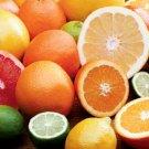 All Natural Citrus Splash Scented Shampoo 2 Oz