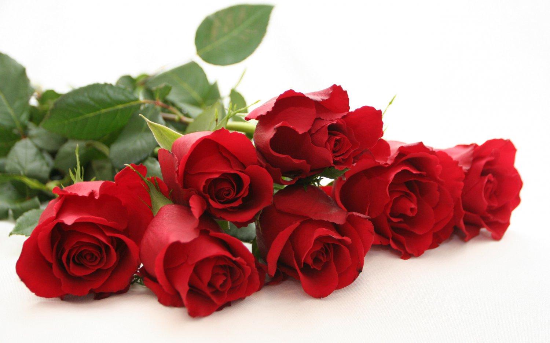 All Natural Fresh Cut Roses Scented Shampoo 2 Oz
