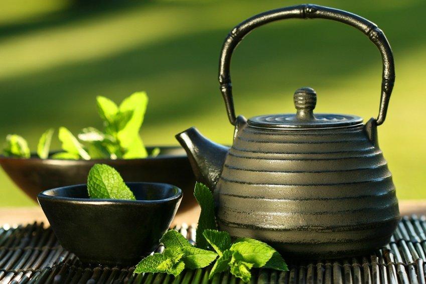 All Natural Green Tea Vanilla Scented Shampoo 2 Oz