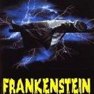 Frankenstein une Histoire D'amour 1974 VERY RARE