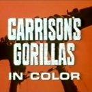 Garrison's Gorillas WWII 1967 Complete