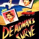 Deadman's Curve 1978  Jan & Dean bio pic