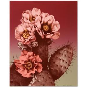 """""""Prickly Pear"""" Limited Edition Lithograph by Lee Trenton signed w/COA"""
