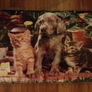 Home - Cute Pets Memory Foam Floor Mat - NEW