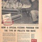 1959 Wayne Feeds Paul Stucky Neuhauser Hatchery Warren IN Ad