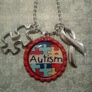 Autism Necklace