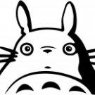 Totoro Anime 7