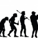 Evolution of Fishing