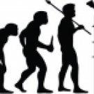 Evolution of Pole Vaulting