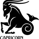 Capricorn 2