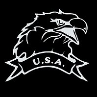 """USA EAGLE (6""""X 6"""")"""