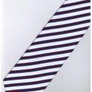 EPP10 Puple White Blue Stripe Neck Tie
