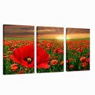 VISUAL STARFlower Garden Stretched Canvas Print Sunrise Photo Digital Printing Group Wall Art Read