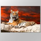 VISUAL STARFramed Canvas Art For Tiger in Sunset Pictures Print On Canvas For Home Modern Decorati