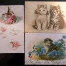 Cute Cats Kitty Kitten in Basket/Glitter-Antique Early 1900's Postcard Lot of 3