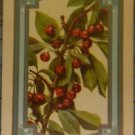 """CHERRIES"" - c. 1914 ANTIQUE VINTAGE USNN NARROW NAMED SWAP PLAYING CARD"