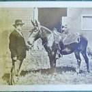 WILLIAM JENNINGS BRYAN-MULE DEMOCRATIC PRESIDENTAL CANIDATE-RPPC PHOTO POSTCARD