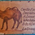 Can Go 8 Day Who Wants to be a CAMEL 2 Humps-LaGrande-ANTIQUE LEATHER POSTCARD