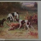 Hunting Dogs Dead Deer in Field Brush Artist Signed Antique Vintage Postcard