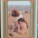 """""""CURIOSITY"""" DOG CHILD TURTLE BEACH-ANTIQUE VINTAGE USWN NAMED SWAP PLAYING CARD"""