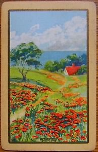 """""""POPPIES"""" FIELD OF & HOUSE - ANTIQUE VINTAGE USNN NARROW NAMED SWAP PLAYING CARD"""