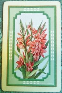 GLADIOLUS-FLOWERS-ANTIQUE VINTAGE USPC NN NARROW NAMED SWAP PLAYING CARD SINGLE