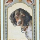 """QUEEN"" - DOG / QUAIL by WILL RANNELLS ANTIQUE USWN WIDE NAMED SWAP PLAYING CARD"
