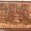 Auburn N.Y. Seward Park Statue New York-Antique Leather 1908 Town View Postcard