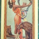 """SAPPHO"" POET Lady/Cats 1916 Antique Vintage USNN Narrow Named Swap Playing Card"