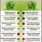 Ambrosial Coriander Essential Oil Pure Natural Organic Uncut Undiluted