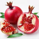Ambrosial Pomegranate Seed Oil (Punica granatum) 100% Natural 10ml to 1000ml